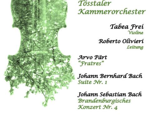 Konzert des Tösstaler Kammerorchesters am 23. März